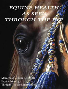 Equine Iridology Book Cover